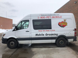 Attention Groomers, Earn over $1000 per week