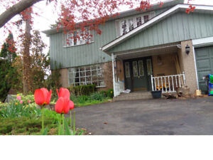 SHORT TERM ROOM RENTAL WITH A PARKING SPACE, EXCELLENT LOCATION!