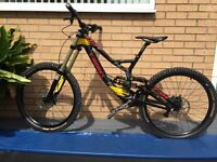 Specialized demo 8 Troy lee design carbon limited edition downhill mountain bike