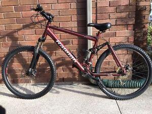 Raleigh Mountain Bike- Large