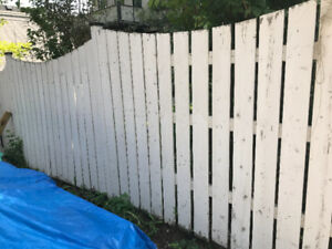 Wood (pressure treated) fence