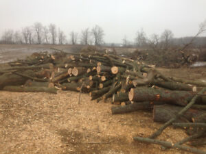 Firewood for sale New Tecumseth