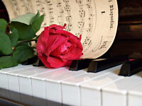 Piano & Music Theory Lessons Available