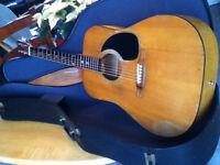 Guitare Norman B30 1974 avec Caisse Rigide