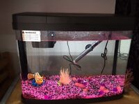 Panorama 40L Fish Tank (LED Light & Therm Heater & More)