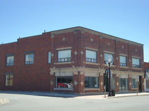 Prime Commercial / Residential Building For Sale Windsor Region Ontario image 1