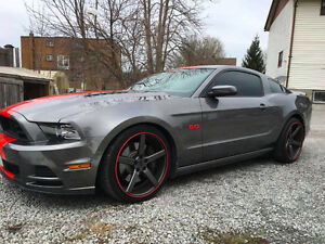 2014 Ford Mustang GT NICEST COUPE IN ONTARIO Coupe (2 door)