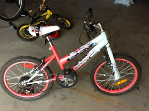 Girls Bike For Sale- Barely used