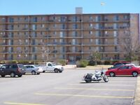 Bachelor Apartments at Regency Towers, 301 Heather way East SJ.