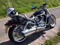 Harley Davidson V Rod VRSCAW