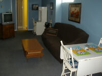 1 Bedroom Fully Furnished Apartment (Sept. - May)