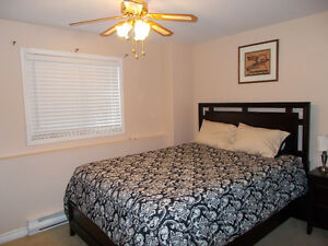 fully furnished and equipped one bedroom above ground apartment St. John's Newfoundland image 3