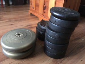 Weights with Bench