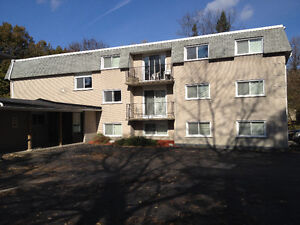 !!!  WOW !!! Private Student Bachelor Suite (5 Minutes from WLU)