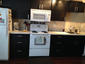 Sherwood Park, 1 bedroom basement suite with ground level entry
