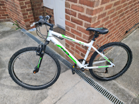 Youth's INDI mountain bike for sale