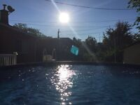 Pool service and maintenance!
