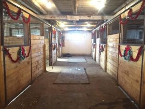 horse boarding available indoor outdoor. indoor arena