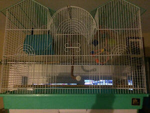 Bird cage , accessories, and bird food