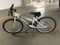 Mountain Bike Junior Size