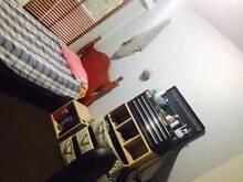 $190 Single Bedroom - Ryde / Macquarie / Parramatta Dundas Valley Parramatta Area Preview