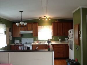 Looking for a roommate to rent a room / share house