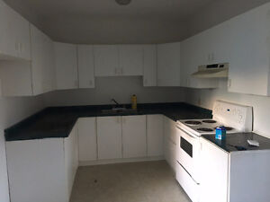 Nice 2-Bedroom Lakeshore Dr. Apartment Available November 1