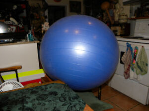 Exercise with like-new Blue Medicine Ball Only $25