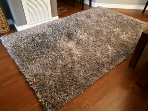 5 by 8 Mint Condition Living Room Rug