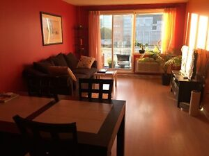 Downtown Jardins Windsor 3 1/2(+den), with furniture, great view