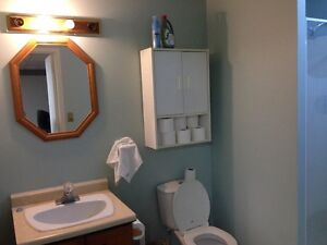 FURNISHED SIX BEDROOM-2 BATHROOM HOME IN PORT HOPE-SEP 18TH 2016 Peterborough Peterborough Area image 8