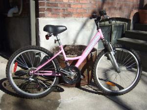 """Revolution 7-speed Bike - 14"""" Frame, for 10+ Girl / Small Woman"""