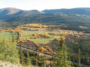 Yukon Agriculture Property for Sale