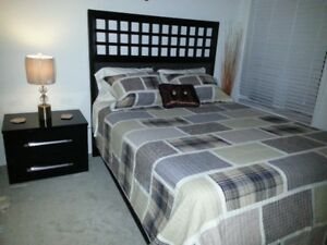 One furnished luxury bedroom for $50 daily rental