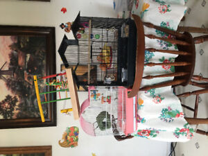 Bird cages and play pen