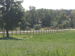 HORSE FENCE...All Types of livestock, equine and farm fence, Kawartha Lakes Peterborough Area image 5