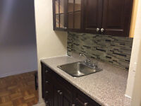 beautiful fully renovated new kitch and bath 1bed 1095 to 1295.0