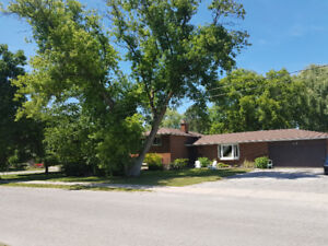 Great Investment Property in Collingwood