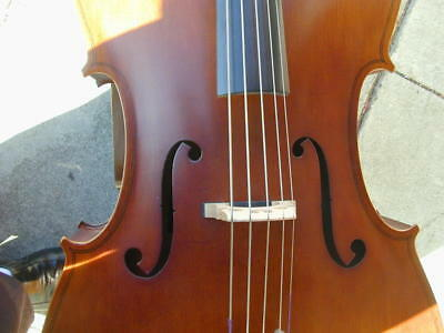 Berkeley Cello Full Size 4 and 5 String Electrical