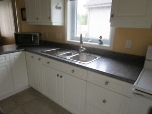 Laminate kitchen counter top  and island top