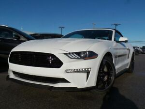2019 Ford Mustang GT CALIFORNIA SPECIAL 5.0L V8 401A