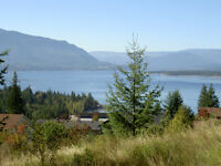 Salmon Arm - Blind Bay - Incredible View Lot