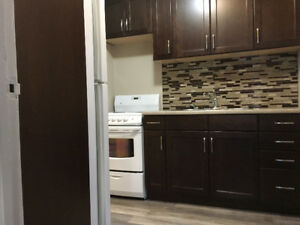 Downtown PA - Newly renovated 1 bedroom apartment