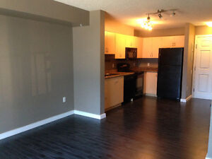 Adorable 1 bedroom +den available immediately Strathcona County Edmonton Area image 8