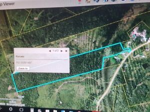 50acre of wooded  land in Jefferies Corner near Sussex NB 55000