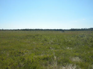 2.5 Acres Near Gibbons