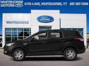 2013 Ford Escape SEL   - $177.43 B/W - Low Mileage