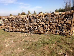 "Seasoned firewood  16"" facecord"