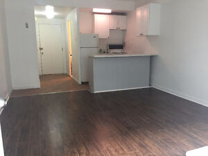***NEWLY RENOVATED STUDIO FOR RENT IN MCGILL GHETTO***