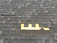 Shingle repair